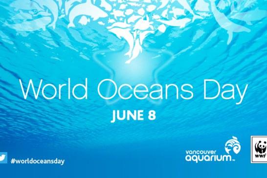روز جهانی اقیانوس ها و خطراتی که بیشتر می شوند