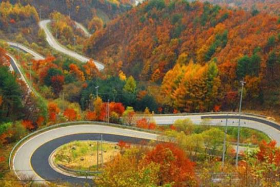 زیباترین جاده های ایران کدام اند؟