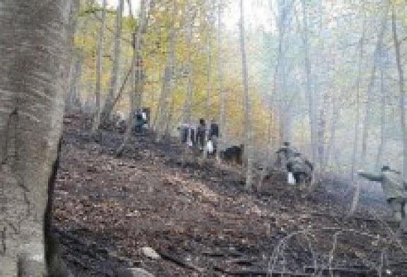 ۱۵هکتار جنگل در تنکابن در آتش سوخت