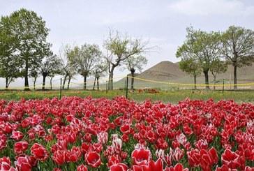 محلات؛ بهشت افسانهای در ایران