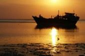 قشم، جزیرهای اسرارآمیز در جنوب ایران