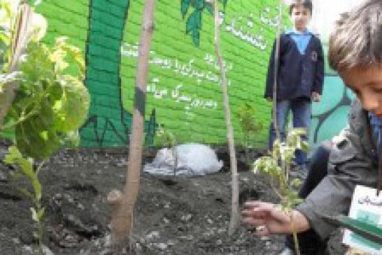 مدرسه طبیعت، به کودکان فرصت آشنایی با مهارتهای زندگی میدهد
