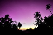 مالدیو از نگاهی دیگر