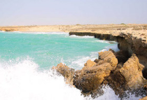 سواحل جنوبی استان بوشهر متلاطم میشود