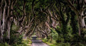 جاده پادشاهی فیلم گیم آف ترونز کجاست؟