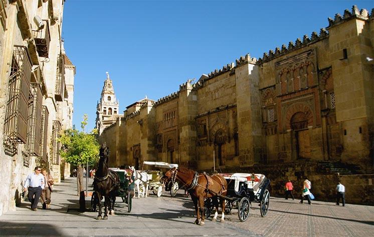 جوامع مهاجران بزرگ و فراوانی در اسپانیا وجود دارد